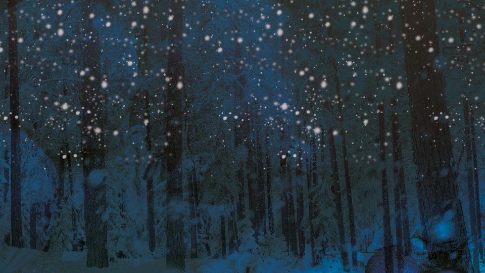Winter Wonderland Web Image